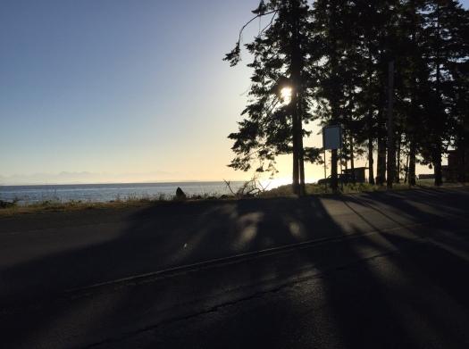 MORNING OCEAN GLORY